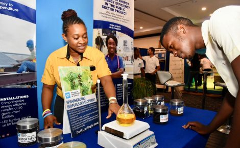 Research Scientist, Petroleum Corporation Jamaica (PCJ), Candice Edwards Simms (left), explains the processes involved in producing bio fuel from castor seeds to Christiana High School student, Antonio Miller. Occasion was the opening of the Jamaica Alternative Energy Expo on Friday (June 15), at the Jamaica Pegasus Hotel in New Kingston.