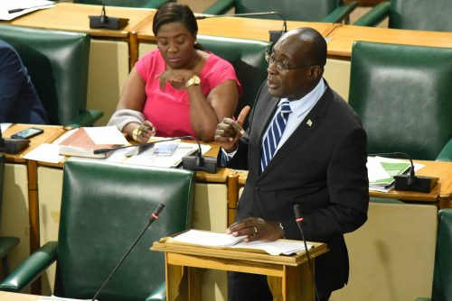 Minister of Education, Youth and Information, Senator the Hon. Ruel Reid (right), makes a point during today's (July 6) sitting of the Senate. The Minister opened the debate on the Child Diversion Bill. At left is Government Senator, Kerensia Morrison.