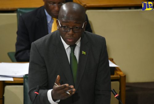 Minister of State in the Ministry of Foreign Affairs and Foreign Trade, Senator the Hon. Pearnel Charles Jr.
