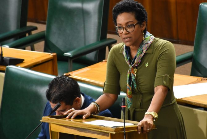 Government Senator, Dr. Saphire Longmore, makes her contribution to the State of the Nation Debate in the Senate on Friday (November 9). She suggested that intervention programmes should be introduced at antenatal clinics to support abused pregnant women.