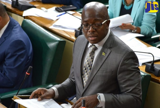 Minister with Portfolio in the Ministry of Economic Growth and Job Creation, Senator the Hon. Pearnel Charles Jr.