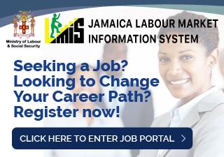 Labour Market Information System (LMIS) Job Portal