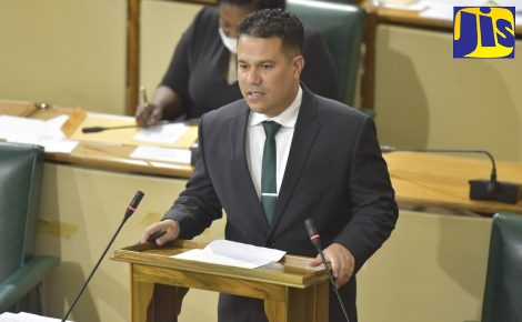 Government Senator, Matthew Samuda, highlights a point while piloting the Tourism Workers' Pension Scheme Regulations in the Senate, on Friday (May 1).