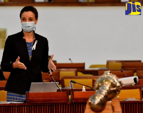 Leader of Government Business in the Senate and Minister of Foreign Affairs and Foreign Trade, Senator the Hon. Kamina Johnson Smith, emphasises a point while addressing Friday's (November 20) sitting of the Senate.