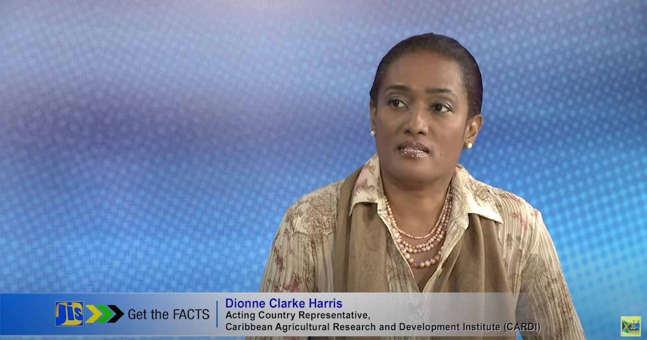 Get The Facts with Dionne Clarke Harris Acting Country Representative