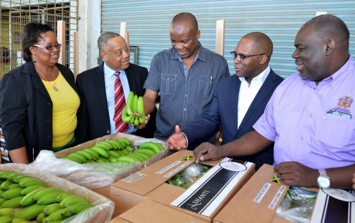Minister of Agriculture, Labour and Social Security, Hon. Derrick Kellier (2nd left), makes a comment to St. Mary banana farmer, Noel Clarke (centre), during a visit to the Agricultural Marketing Corporation (AMC) Complex in Kingston on Friday (January 23), to observe the packaging of banana for export. Others (from left) are: General Manager at the Banana Board, Janet Conie; Head of Ashanti Limited, Noel Dempster; and Permanent Secretary in the Agriculture Ministry, Donovan Stanberry.