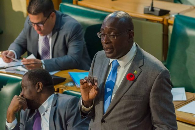 Minister of Education, Youth and Information, Senator the Hon. Ruel Reid, emphasises a point while updating the nation on the results of the 2017 Grade Four Literacy and Numeracy tests in the Senate today (October 6).