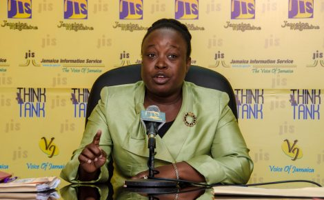 Medical Entomologist in the Ministry of Health, Sherine Huntley Jones, addresses a recent JIS Think Tank.
