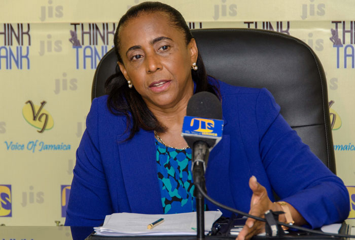 Chief Executive Officer  of the National Land Agency (NLA), Elizabeth Stair, speaking at a JIS 'Think Tank'.