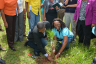 Minister of State in the Ministry of Education, Youth and Information, Hon. Floyd Green, (left stooping) is assisted by Annmarie Bromfield in the planting of a Caribbean Pine Tree during activities to celebrate National Tree Planting day at Munro College in St. Elizabeth, on Friday, October 7. The annual exercise, which is spearheaded by the Forestry Department, aims to highlight the role of trees in the sustenance of life. This year's National Tree Planting Day was celebrated under the theme 'Trees Today, Trees Tomorrow, Trees for Life'.