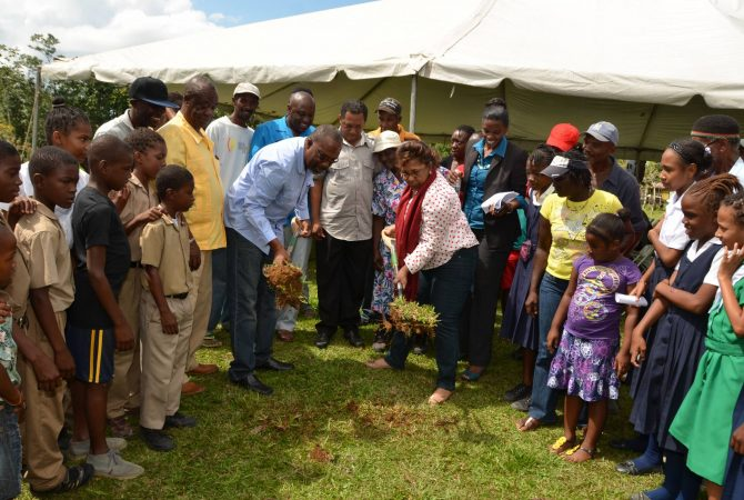 Minister of State in the Office of the Prime Minister and Member of Parliament for Eastern Westmoreland, Hon. Luther Buchanan, and Chairman/Manager of the Jamaica Emergency Employment Programme (JEEP), Lucille Brodber, break ground for construction of the Belvedere Community Centre on Thursday (Feb.20). Looking on are community members.