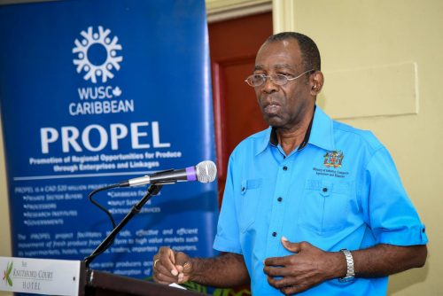 Minister without Portfolio in the Ministry of Industry, Commerce, Agriculture and Fisheries, Hon. JC Hutchinson, addresses the Women & Youth in Agriculture Consultation Forum at the Knutsford Court Hotel in New Kingston on January 19.