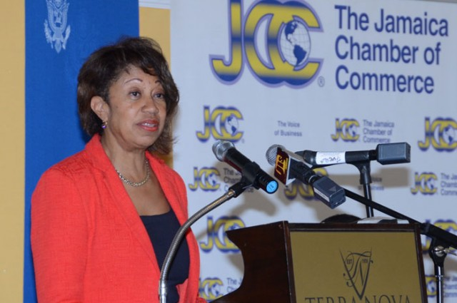 President of JAMPRO, Diane Edwards, addressing participants at a business franchising seminar, held today  (May 19), at the Terra Nova Hotel, in St. Andrew.