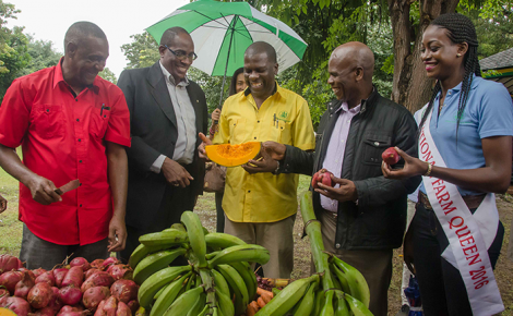 President, Jamaica Agricultural Society (JAS), Norman Grant (centre), admires a piece of pumpkin during the 13th anniversary of the Eat Jamaican Day exposition on the lawns of Devon House in Kingston, today (November 25). Others (from left) farmer Lascelles Simmond; Chief Technical Director in the Ministry of Industry, Commerce, Agriculture and Fisheries, Stephen Wedderburn; Custos of Kingston, Hon. Steadman Fuller, and 2016 National Farm Queen, Safiya Clennon.