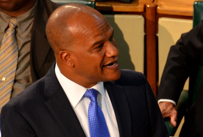 Minister of National Security, the Hon. Peter Bunting in parliament. (FILE)