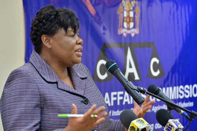 Consumer Affairs Commission (CAC) Chief Executive Officer, Dolsie Allen, speaking during the agency's quarterly media briefing at the Ministry of Industry, Commerce, Agriculture and Fisheries, in New Kingston, on July 5.