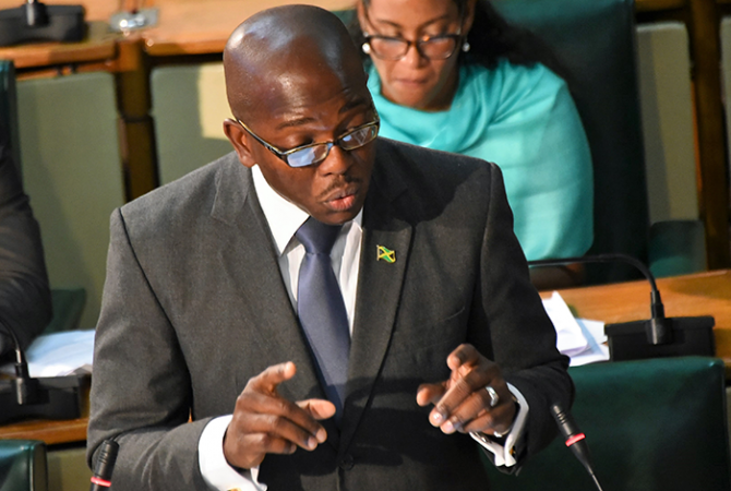 State Minister for National Security, Senator the Hon. Pearnel Charles, Jr., making his presentation on the Law Reform (Zones of Special Operations) (Special Security and Community Development Measures) Act, 2017, during Friday's (July 7) sitting of the Senate at Gordon House, where it was debated and passed.