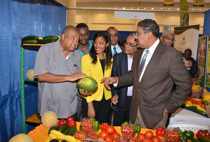 Minister of Tourism and Entertainment, Hon. Dr. Wykeham McNeill (right), in conversation with Chief Executive Officer of the Rural Agricultural Development Authority (RADA), Lenworth Fulton (left), during his tour of booths at JAPEX 2014, at the Montego Bay Convention Centre in Rose Hall, St. James, on September 22. Others (from second left) are: President of the Jamaica Hotel and Tourist Association, Nicola Madden Greig and Chairman of the Jamaica Tourist Board, Dennis Morrison.