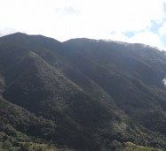A section of the Blue and John Crow Mountains. Photo courtesy of http://whc.unesco.org/
