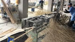 Bamboo the Future