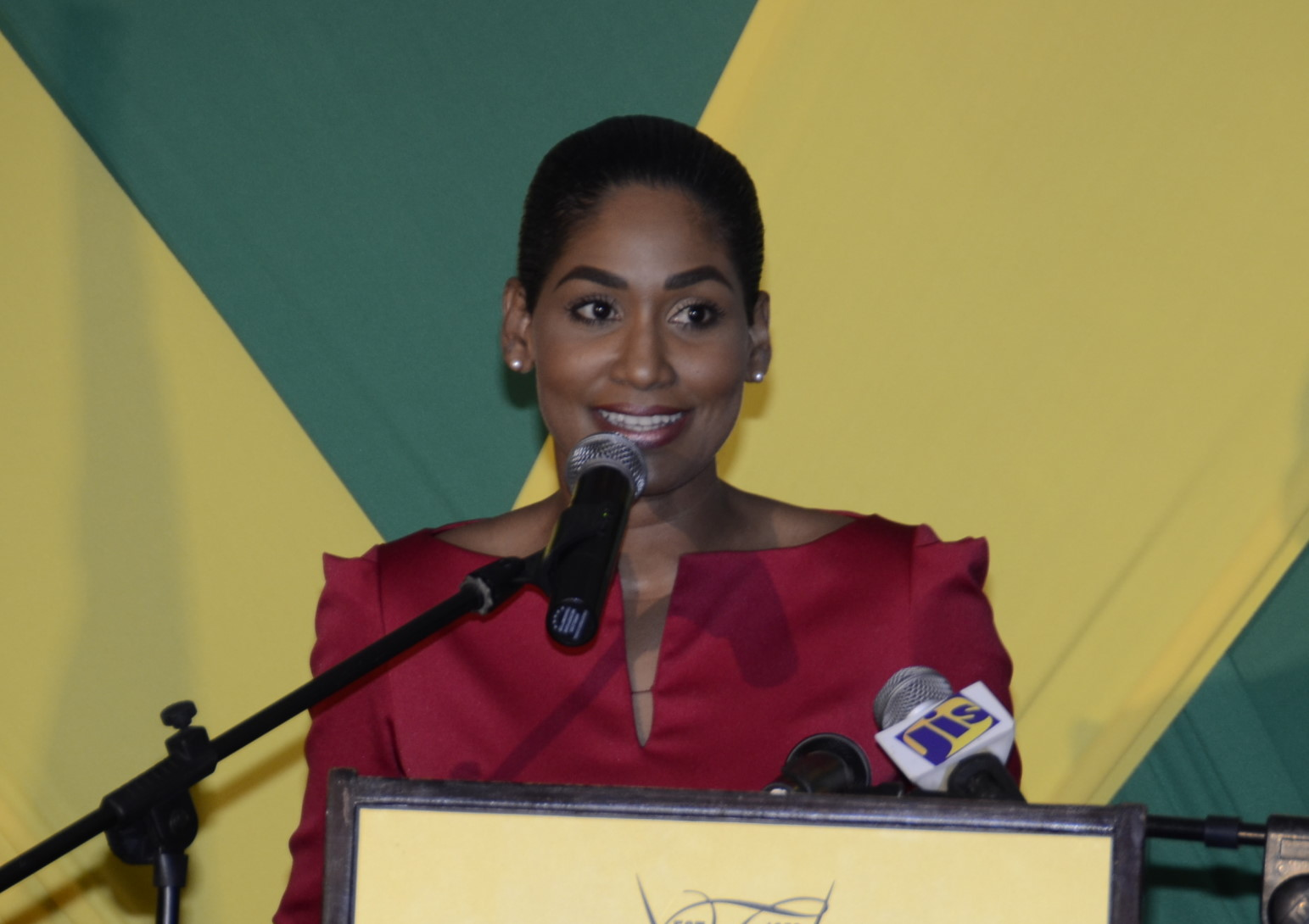 tertiary education key to jamaica's 10 transforming education  estp by focusing on capacity building within key sector agencies  transform jamaica's education system for which.